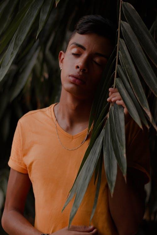Photos gratuites de adolescent, debout, feuilles vertes, garçon