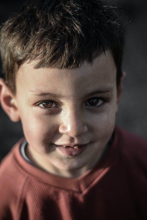 Photos gratuites de adorable, bonheur, concentrer, content