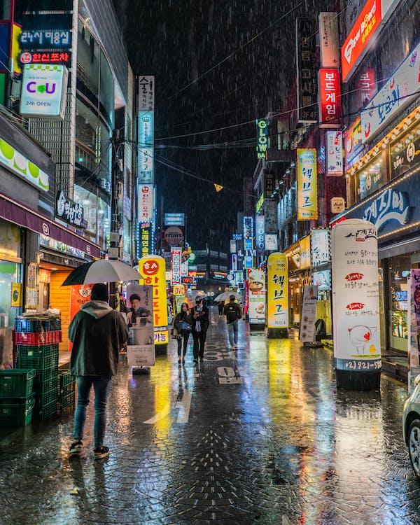Person Wearing Black Jacket Holding Black Umbrella Walking on Street