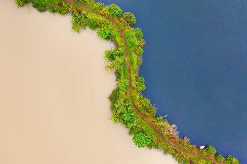 açık hava, ada, ağaçlar, büyüme içeren Ücretsiz stok fotoğraf