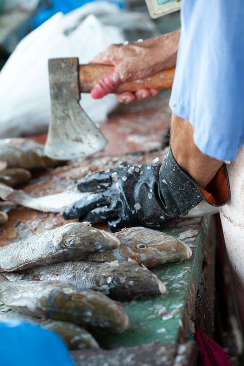 Person Chopping Fishes