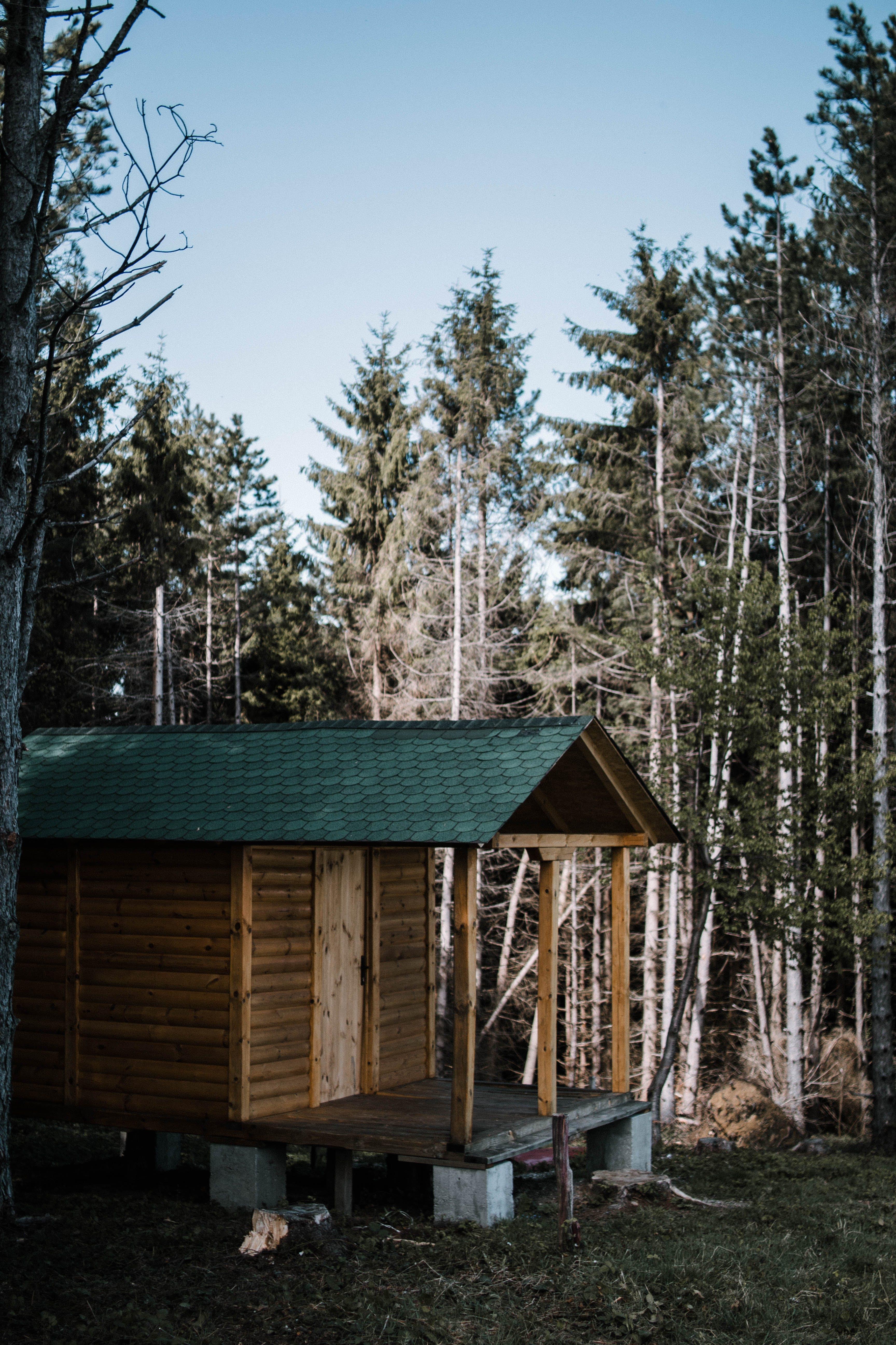 Fotos de stock gratuitas de al aire libre, arboles, bosque, bungalow