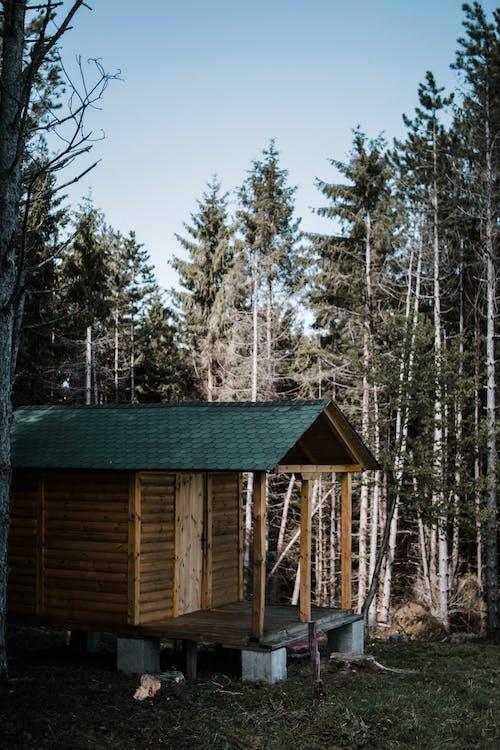 Darmowe zdjęcie z galerii z badać, bungalow, chatka, dach