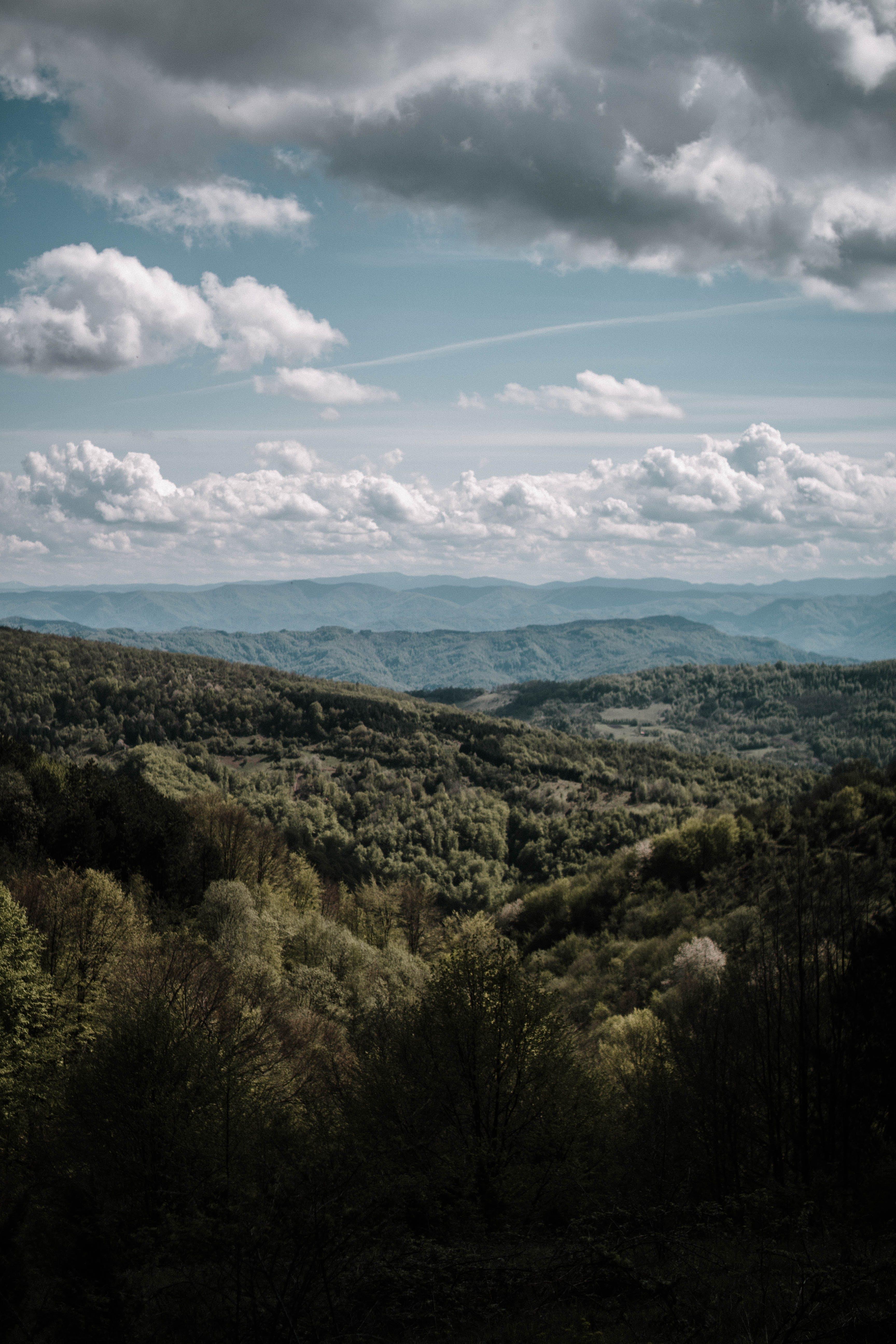 Kostenloses Stock Foto zu abenteuer, bäume, berg, blauer himmel