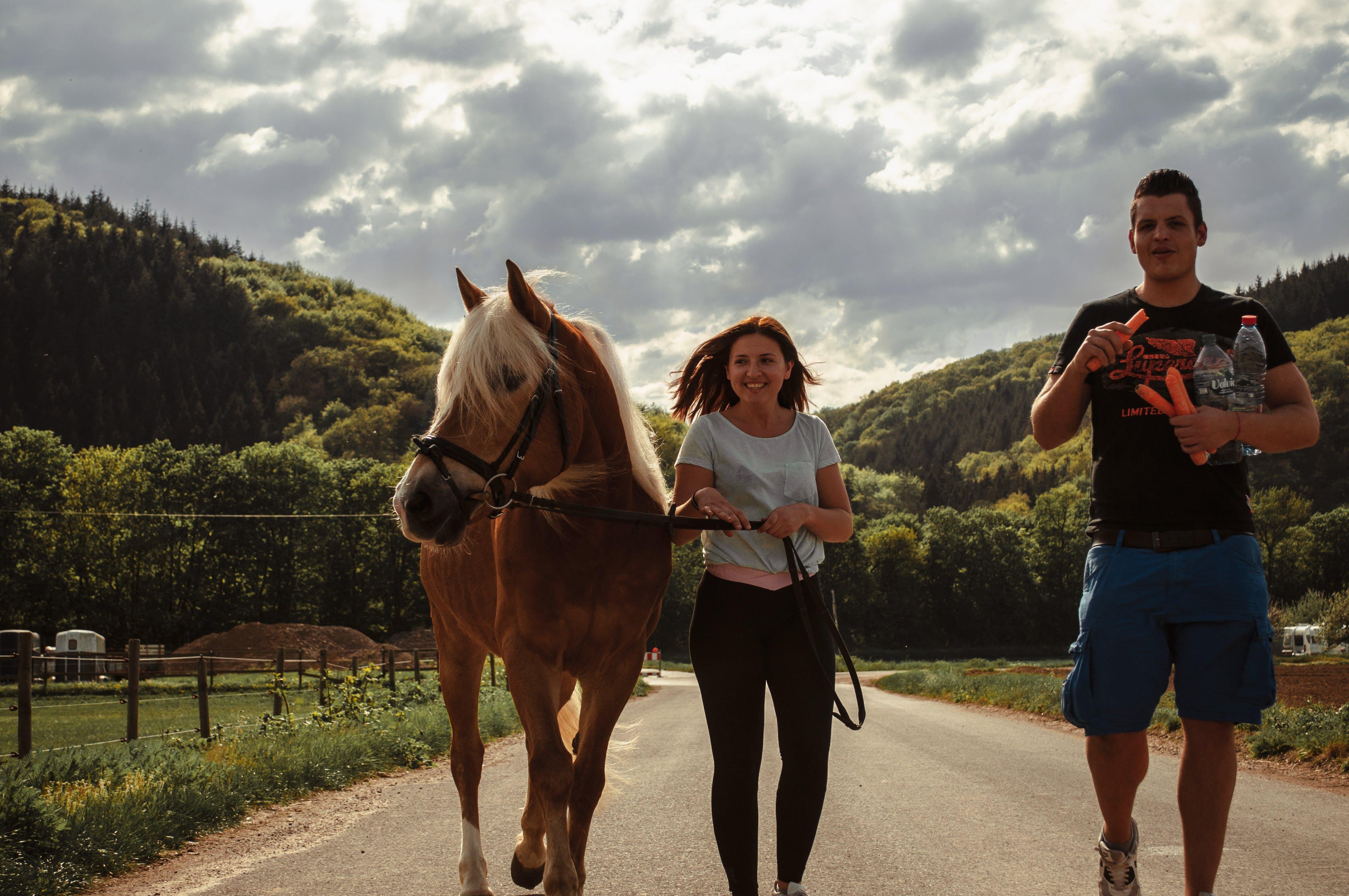 Woman Walking Between Horse and a Man