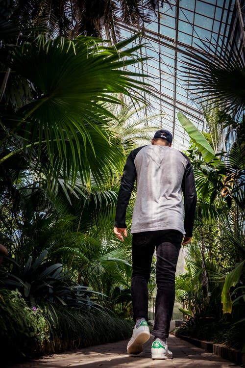 Man Wearing Black Jeans Walking Besides Green Plants