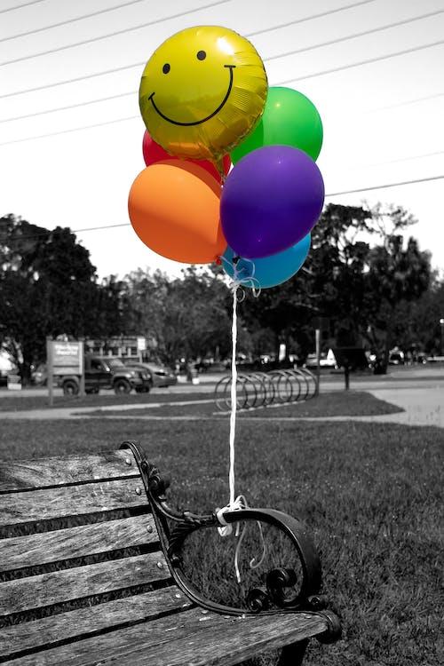 Foto d'estoc gratuïta de blanc i negre, color, parc urbà, somriure