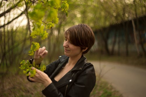 Foto stok gratis bokehlicious, botani, istri, ke dalam hutan