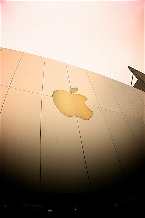 Gratis stockfoto met appel, apple, architectuur, fruit