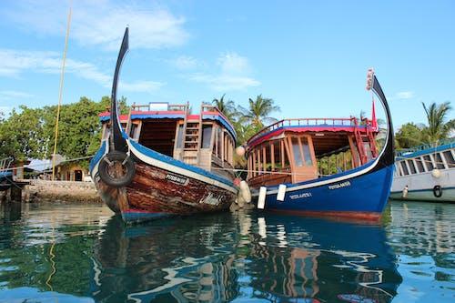 Základová fotografie zdarma na téma čluny, oceán, odrazy, palmy