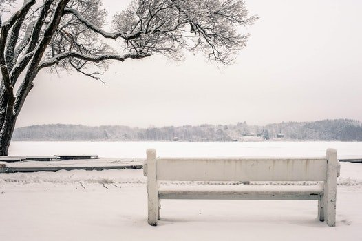 Free stock photo of cold, snow, bench, water