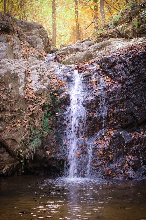 Immagine gratuita di cascata, rocce