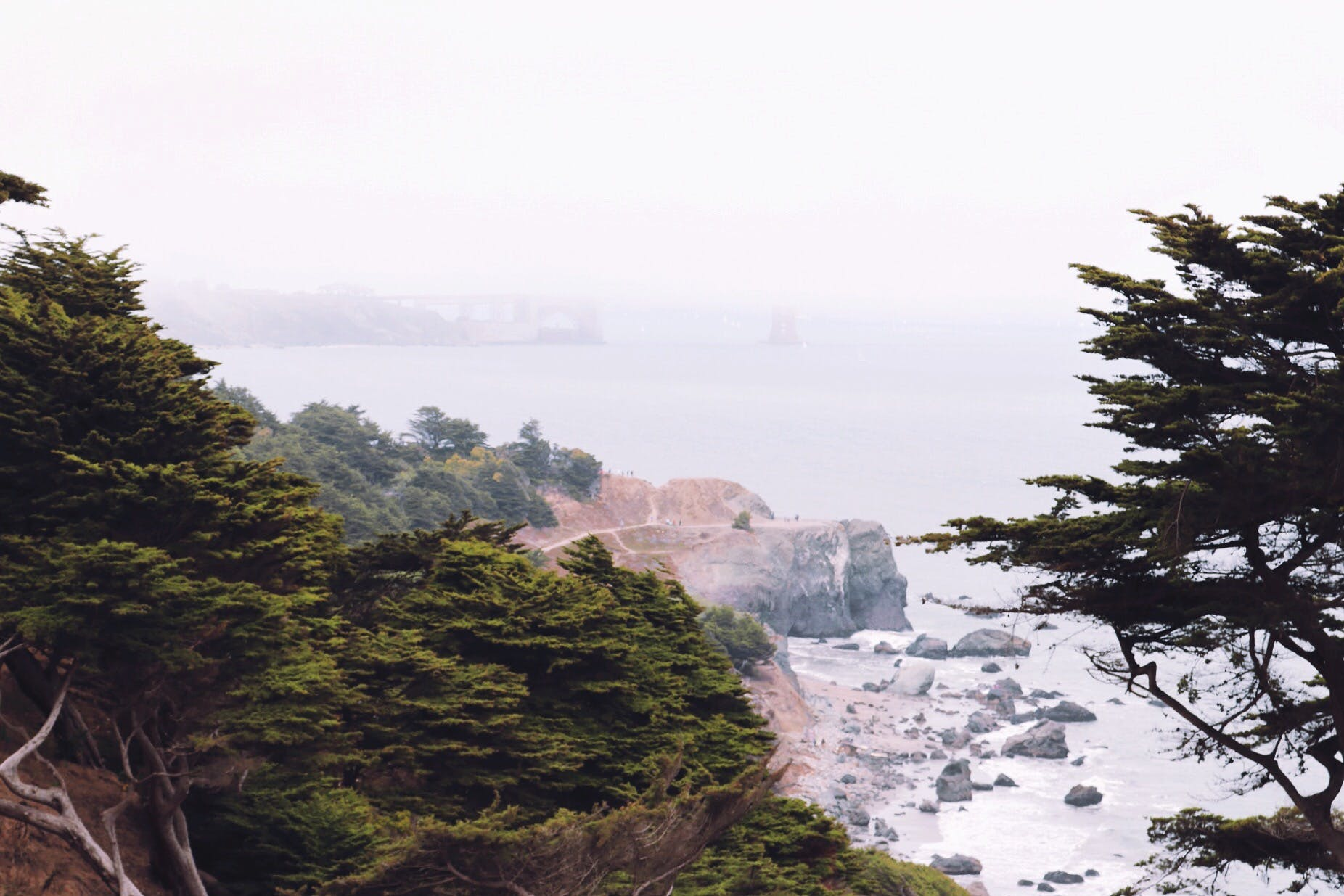 Free stock photo of art, forests, golden gate bridge, mountains