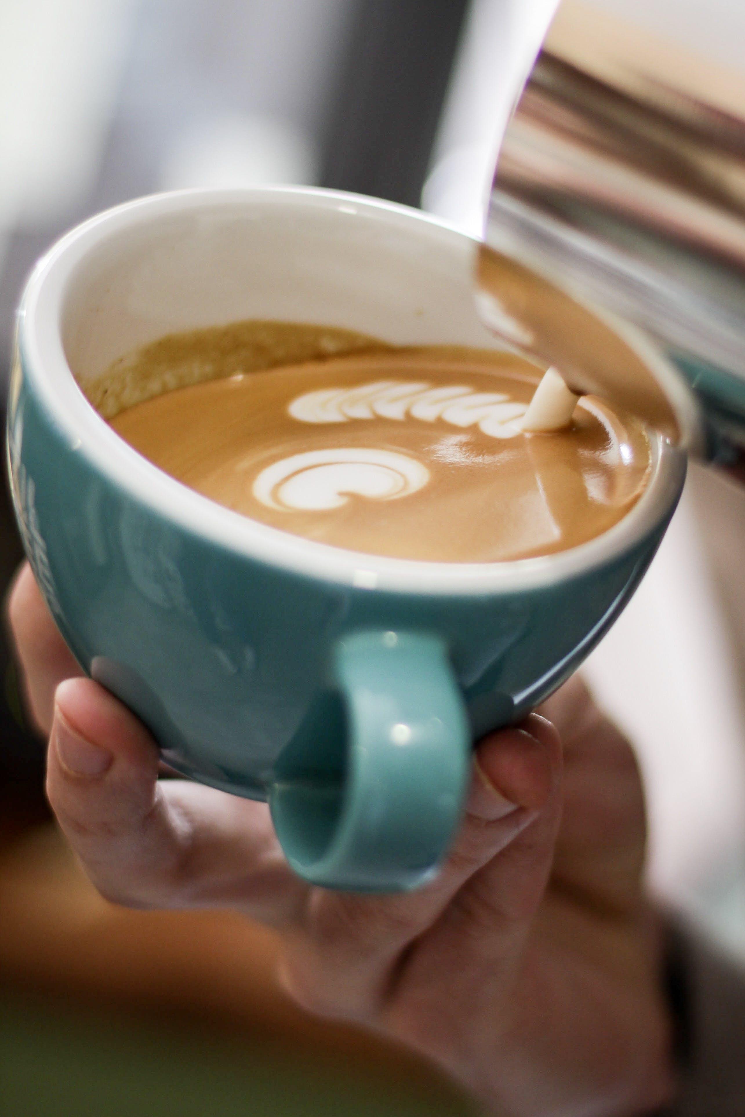 Foto d'estoc gratuïta de abocant, abocar, art latte, beguda
