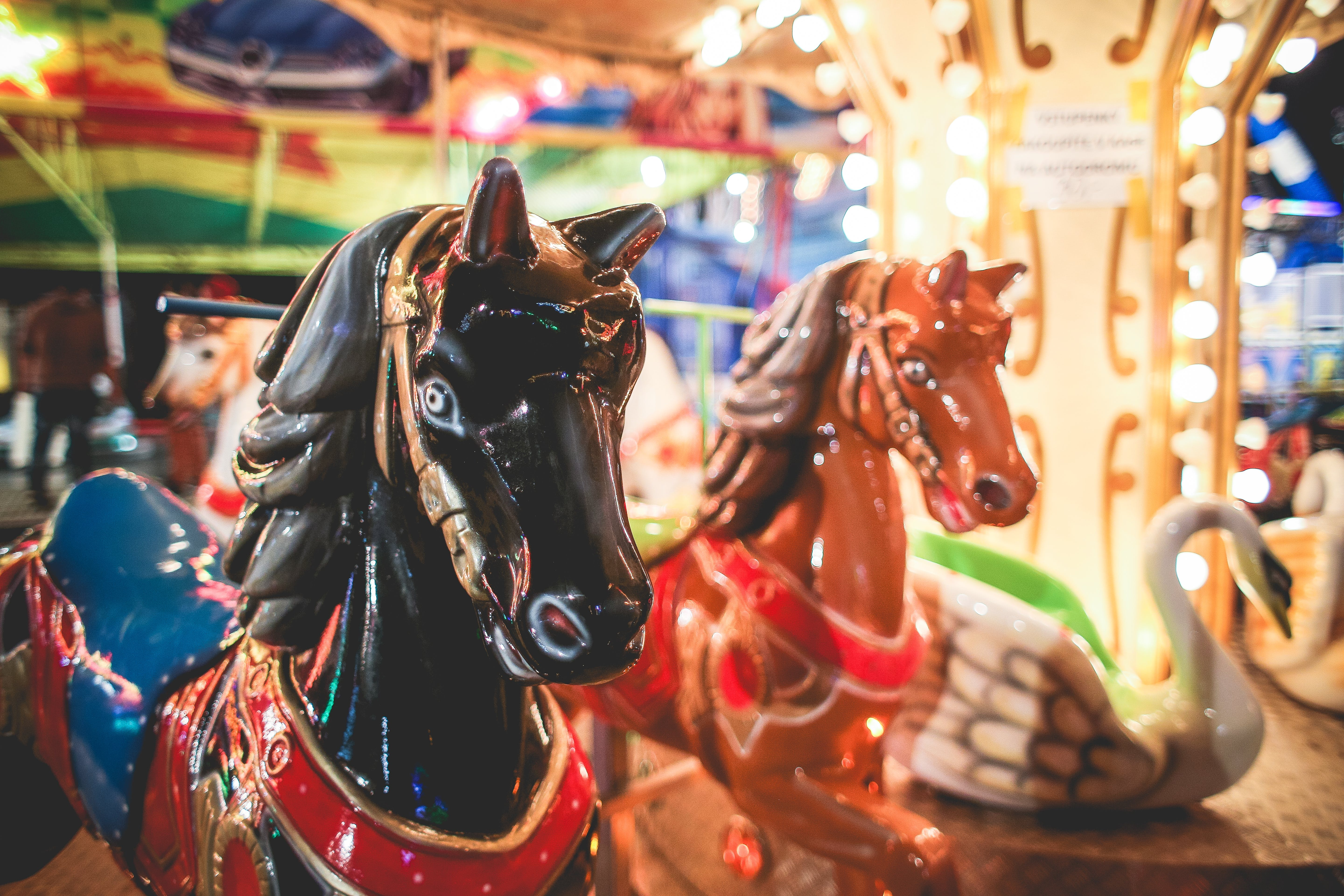 Closeup Photography of Brown and White Carousel