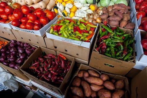 Gratis stockfoto met aanbieding, aandeel, aardappelen, box