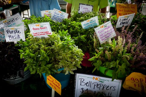 Free stock photo of #agbiopix agriculture farmer's market herbs
