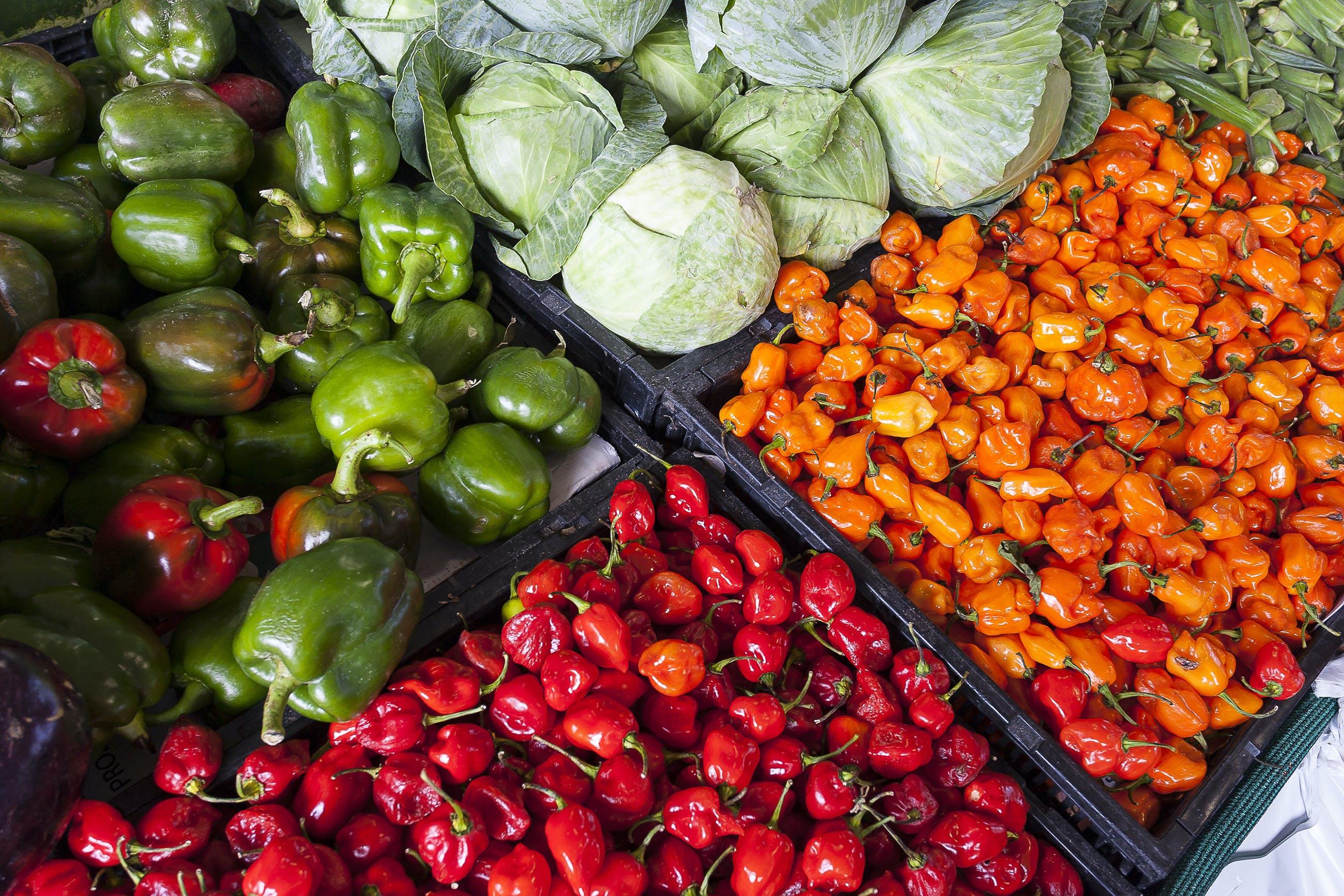 Základová fotografie zdarma na téma barevný, čerstvý, hojnost, ingredience
