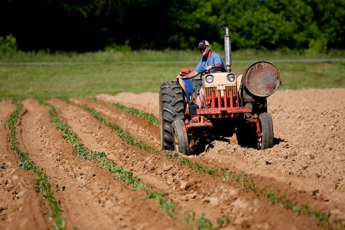 Man Riding Red Tractor On Field