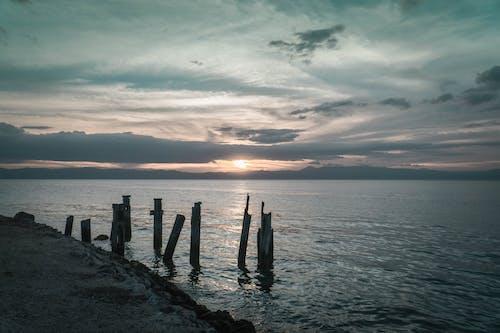 Photos gratuites de bord de mer, bûches de bois, crépuscule, le soleil couchant sur la plage