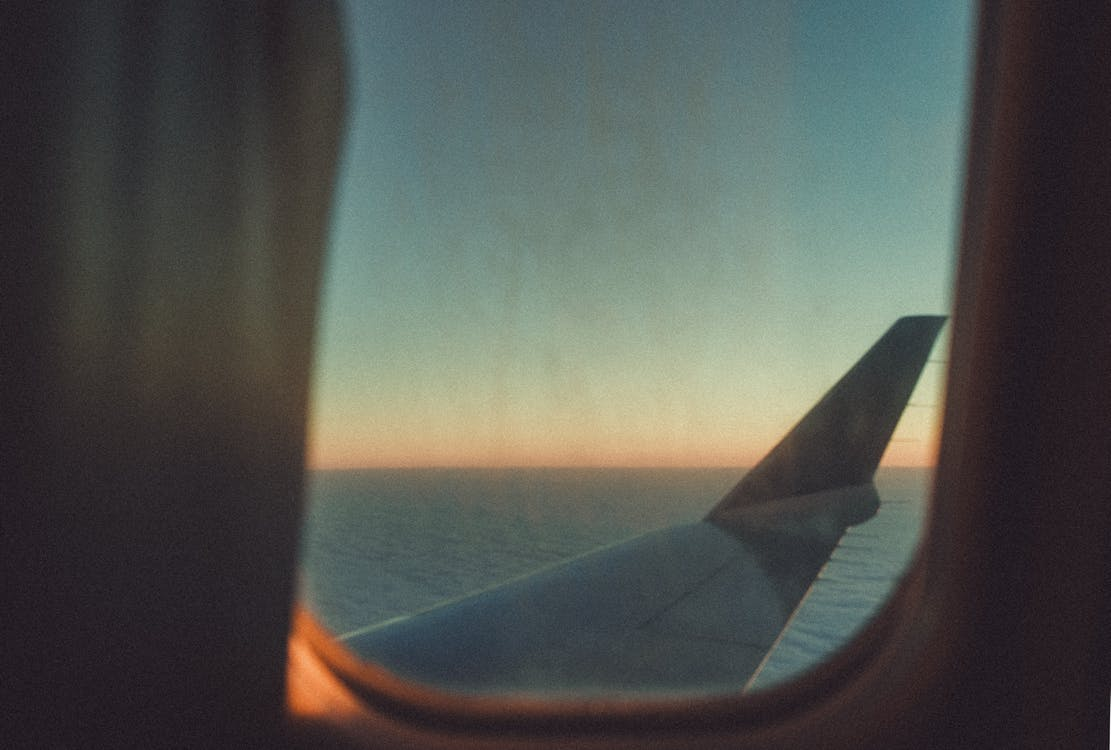 White Plane Wing during Golden Hour