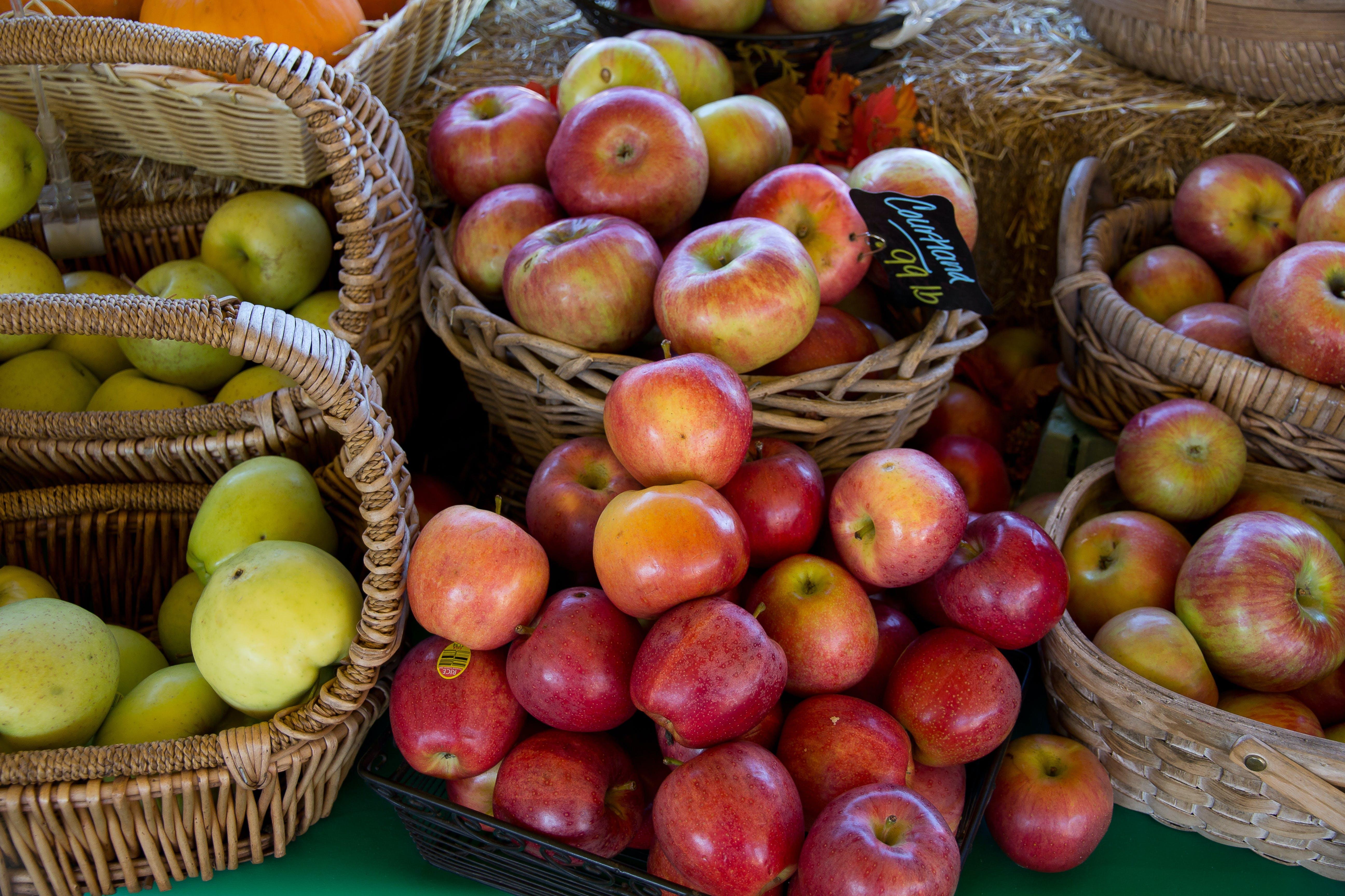 Foto stok gratis anyaman, apel, apel hijau, berair