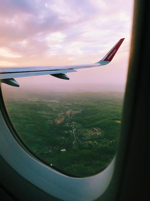 Бесплатное стоковое фото с Авиация, воздух, деревья, закат