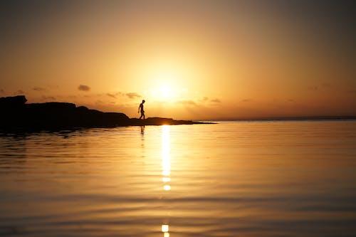 Darmowe zdjęcie z galerii z silouhette, w kadrze, zachód słońca