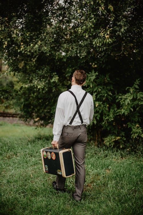 나르다, 나무, 날씬한, 남자의 무료 스톡 사진