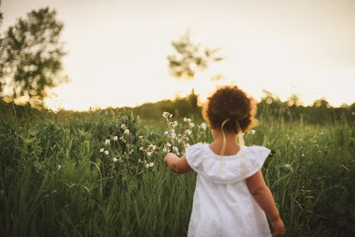 Girl Standing Beside White Flower Field