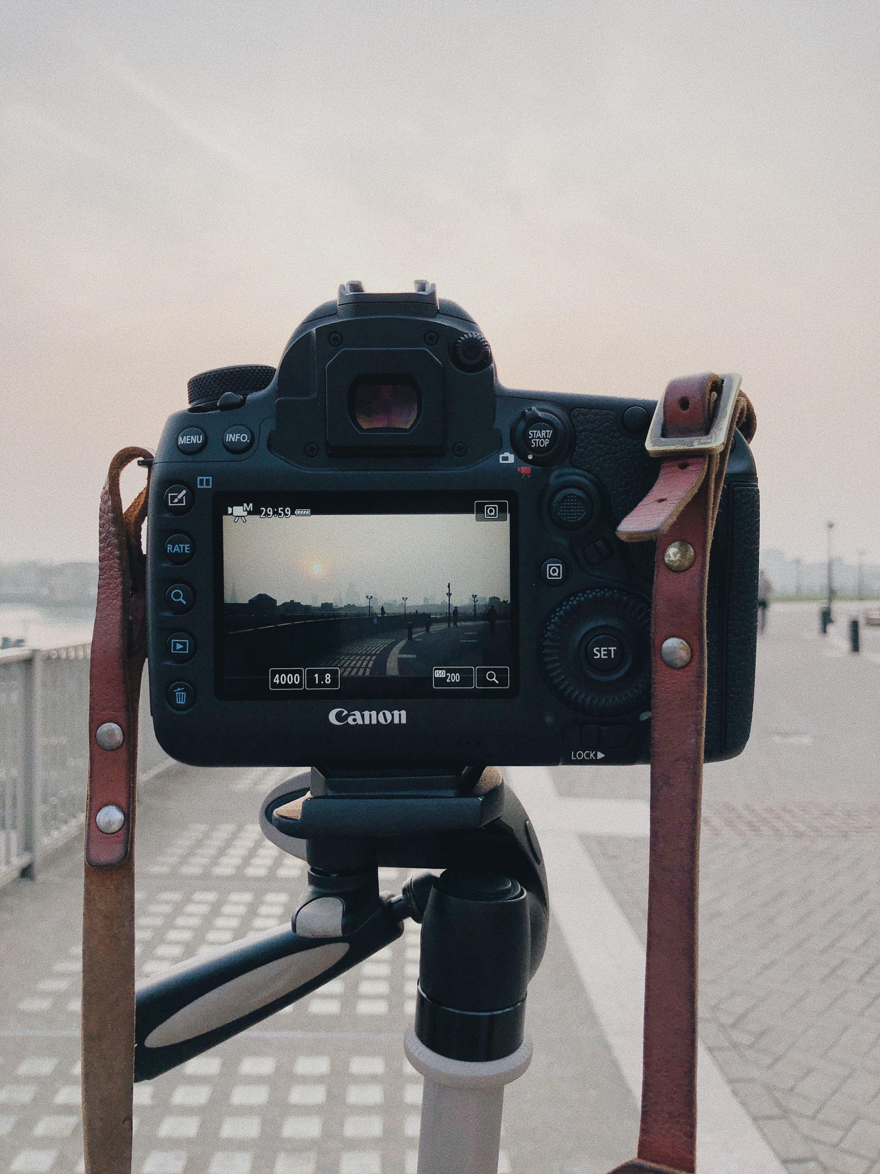 三腳架, 休閒, 佳能, 公園 的 免費圖庫相片