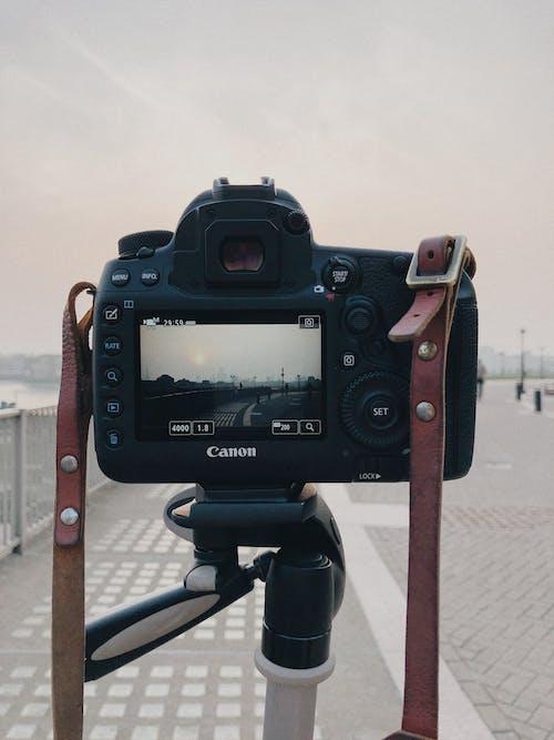 açık hava, aksiyon, boş zaman, canon içeren Ücretsiz stok fotoğraf