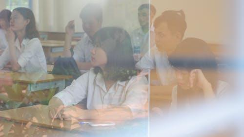 Gratis lagerfoto af erindringer, klasse, skole, studerende
