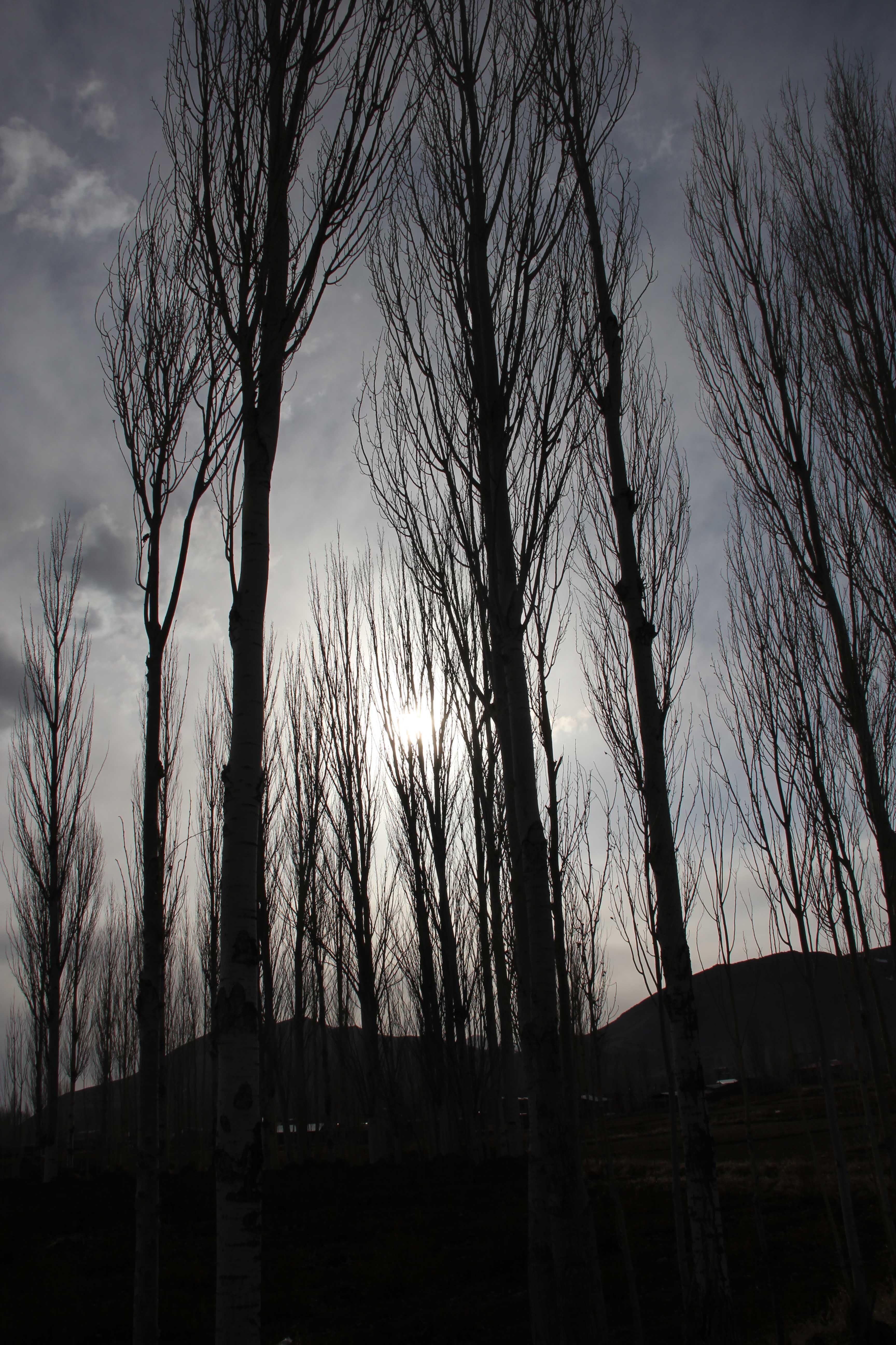Iran- Kashan 2004