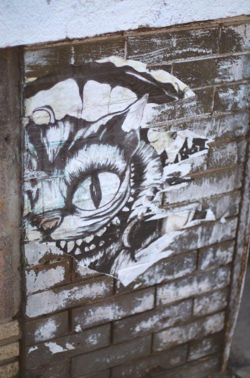 Fotobanka sbezplatnými fotkami na tému abstraktný, alice, cheshire mačka, mačka