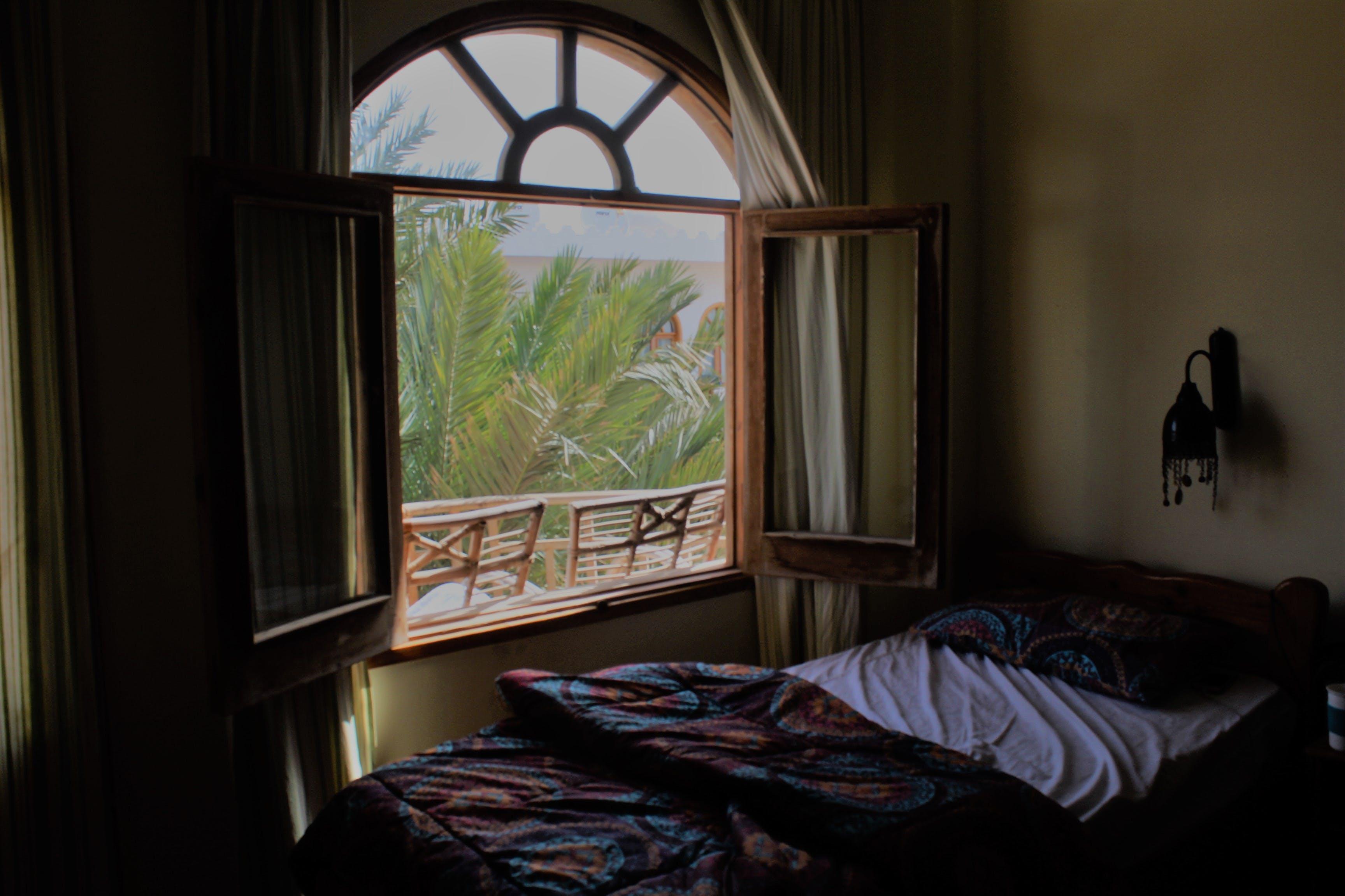 Foto d'estoc gratuïta de apartament, arbre, cadires, casa