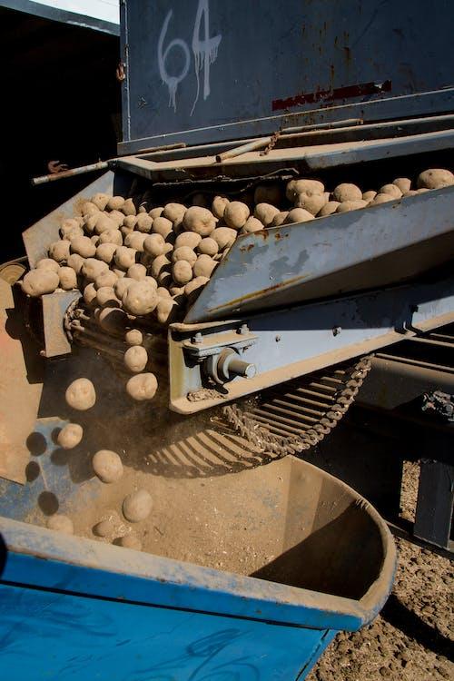 交通系統, 咖啡磨豆機, 土, 土壤 的 免费素材图片