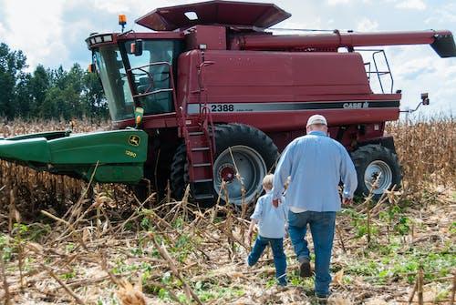 Ilmainen kuvapankkikuva tunnisteilla #agbiopix viljelijä maissi sato maatalous