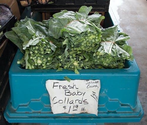 Ilmainen kuvapankkikuva tunnisteilla #agbiopix collards putoaa maatalousmarkkinoille