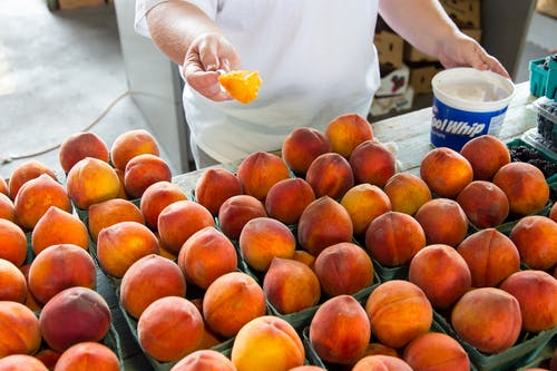 Peaches on Green Trays