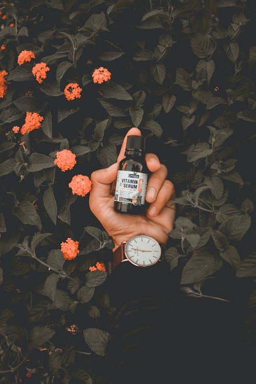 armbåndsur, blade, blomster