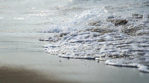 Free stock photo of Baltic Sea, beach, breakwater, foam