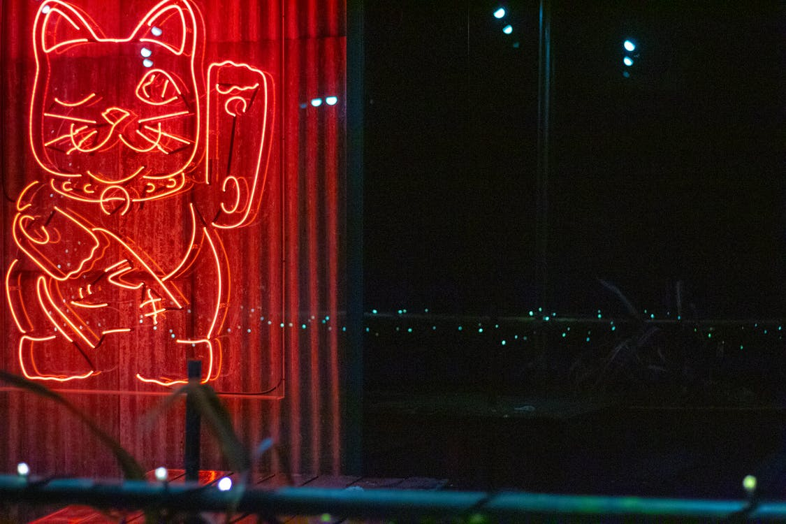 Red Lucky Cat Neon Sign
