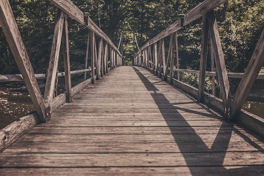 Free stock photo of bridge, path, straight, wooden
