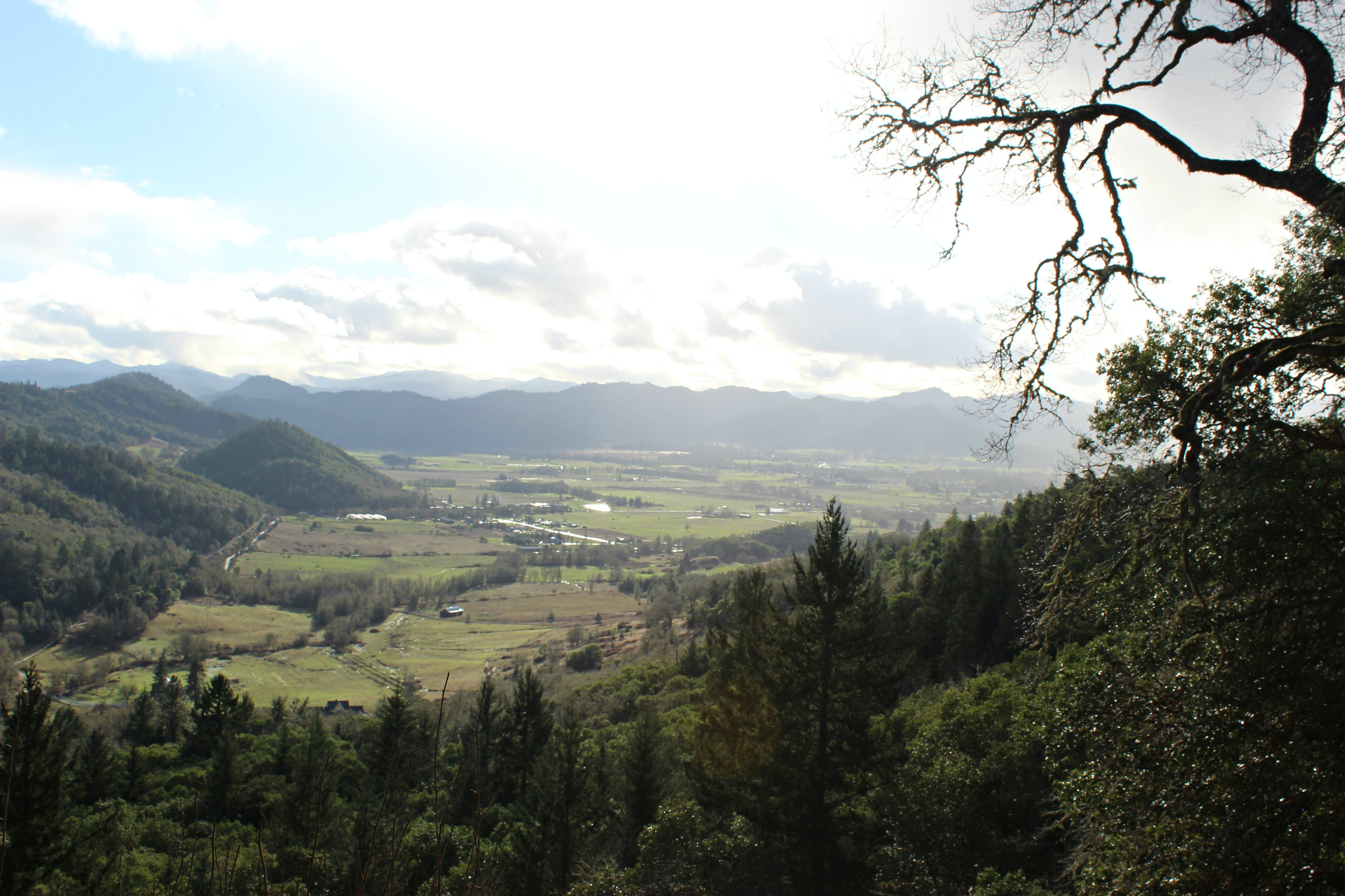 Free stock photo of oregon, valely, valley view, roseburg