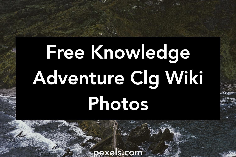 1000+ Amazing Knowledge Adventure Clg Wiki Photos · Pexels
