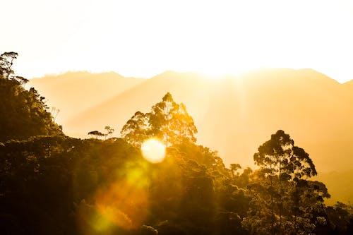 Ilmainen kuvapankkikuva tunnisteilla ilta-aurinko