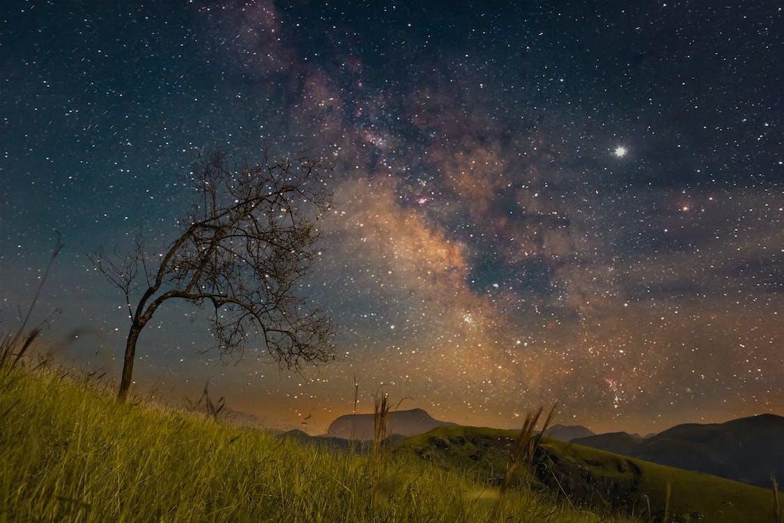 ilta, kuuluisuus, tähtitaivas