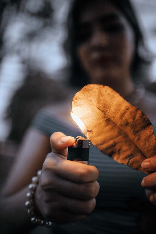 Selective Focus Photography Of Woman Burning Dry Leaf