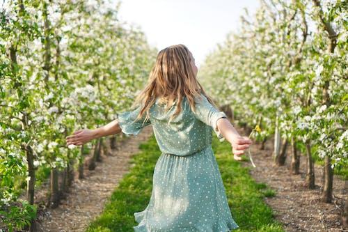 Kostnadsfri bild av äppelblom, känna sig fri